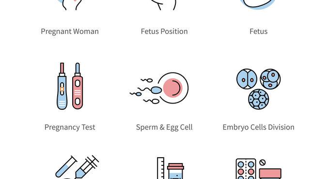 Consejos para aumentar la ovulación y la fertilidad